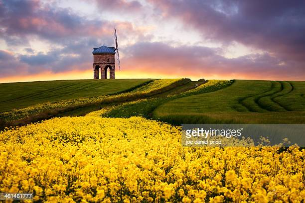 chesterton windmill, warwickshire, england - chesterton stock photos and pictures