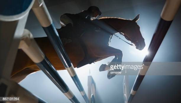 Chestnut horse and it's rider jumping over rail