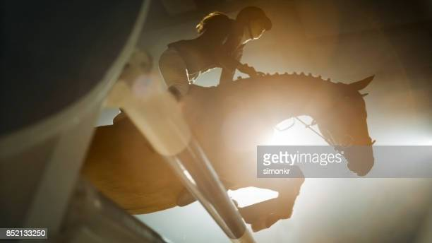 chestnut horse and it's rider jumping over rail - equestrian show jumping stock pictures, royalty-free photos & images
