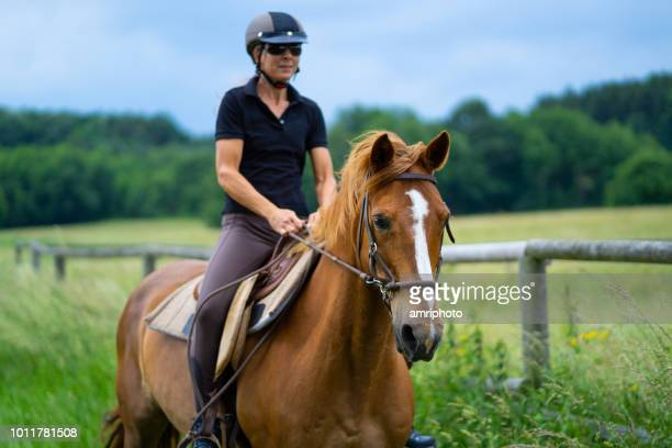 chestnut horse galloping with woman in rural landscape - riding hat stock pictures, royalty-free photos & images