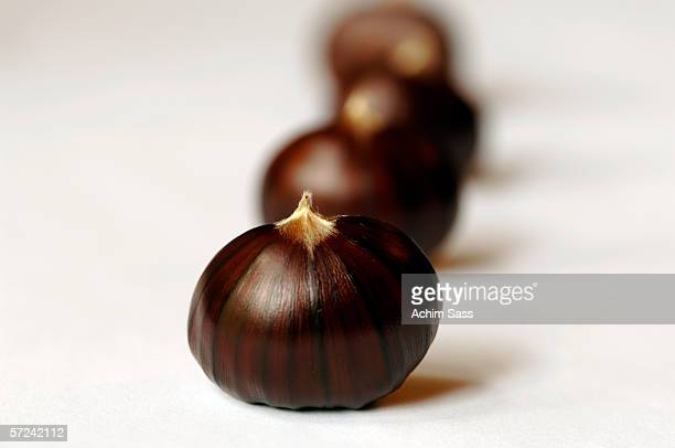 Chestnuts (Castanea), close-up