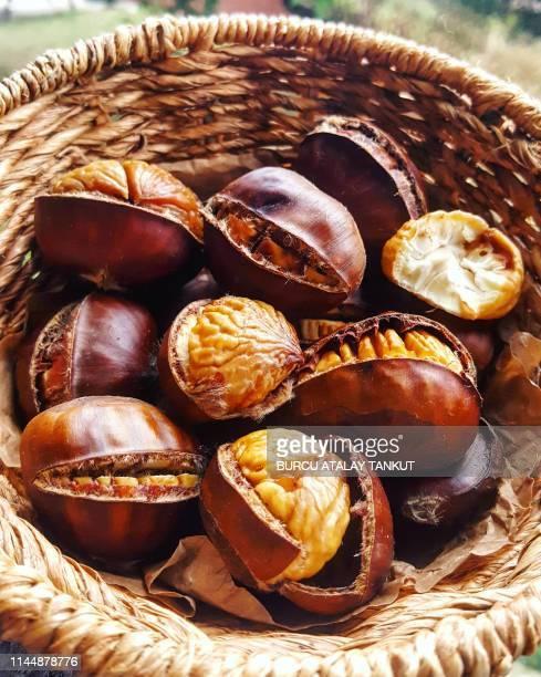 chestnuts in the basket - châtaigne photos et images de collection
