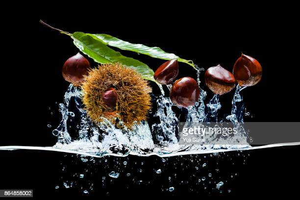 Chestnuts Jump out from water