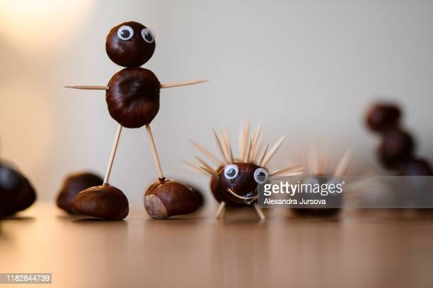 chestnuts - nuts models stock pictures, royalty-free photos & images