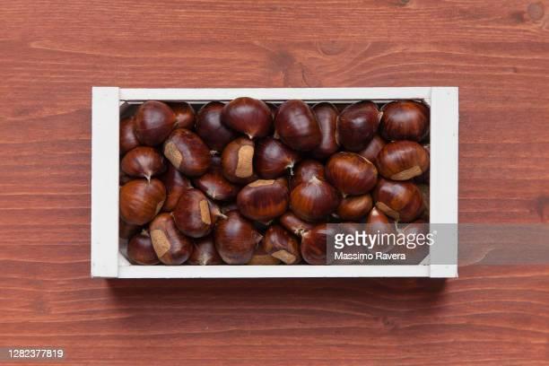 chestnuts - marrone foto e immagini stock