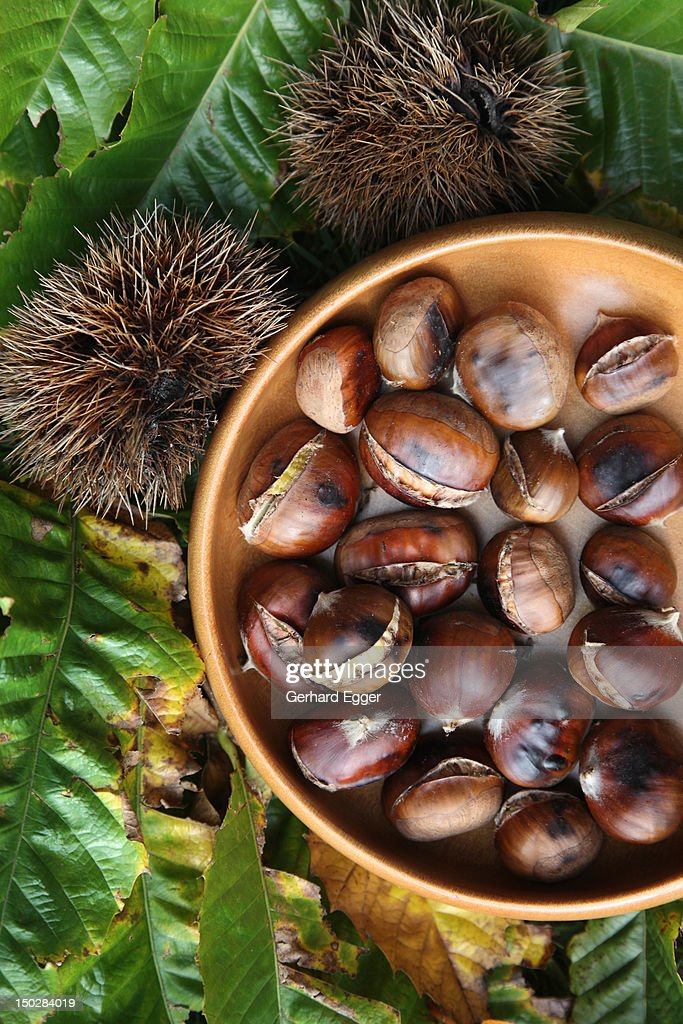 Chestnuts : Stock Photo