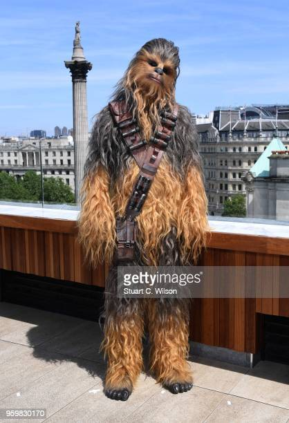 Chewbacca attends Solo: A Star Wars Story photocall on May 18, 2018 in London, United Kingdom.