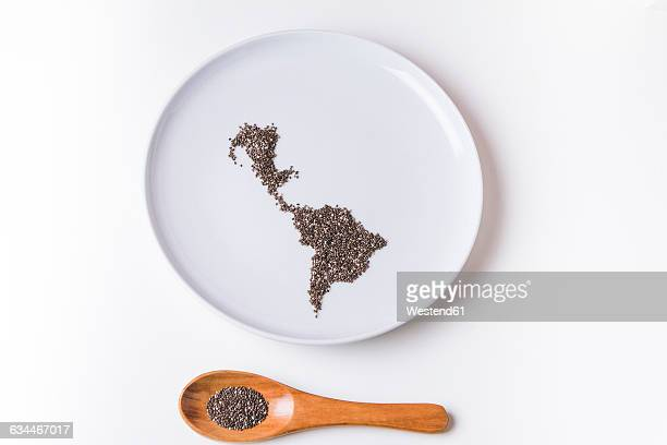 Chia seeds on plate shaped like a map of latin america with wooden spoon