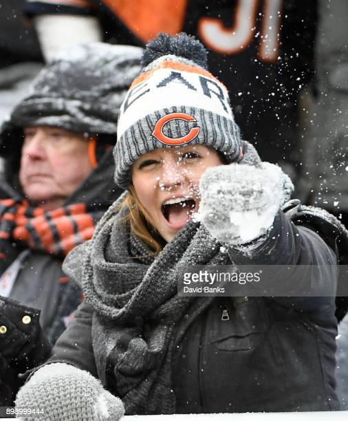 Chicago Bears fan during the fourth quarter on December 24 2017 at Soldier Field in Chicago Illinois