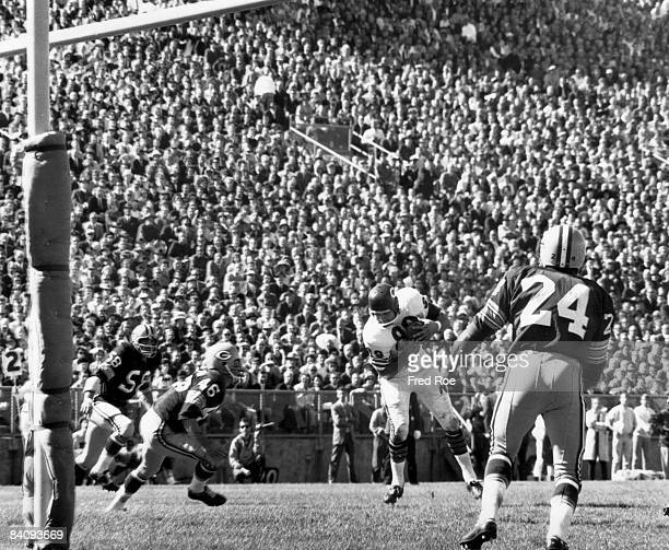 Chicago Bears Hall of Fame tight end Mike Ditka makes a catch in a 103 win over te Green Bay Packers on September 15 1963 at Lambeau Field in Green...