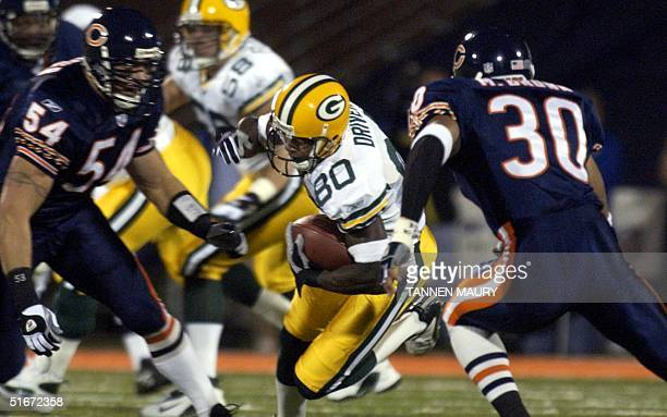 Chicago Bears linebacker Brian Urlacher and safety Mike Brown close in on Green Bay Packers receiver Donald Driver after Driver caught a Brett Favre...
