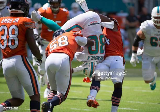Chicago Bears Linebacker Leonard Floyd picks up Miami Dolphins Wide Receiver Danny Amendola assisted by Chicago Bears Linebacker Roquan Smith...