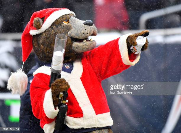 Chicago Bears mascot Staley seen distributing tshirts to fans during the game between the Chicago Bears and the Cleveland Browns on December 24 2017...