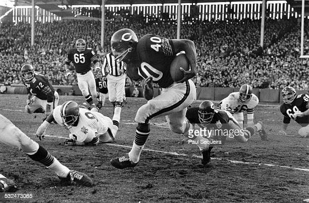 Chicago Bears star running back Gale Sayers runs through the opposition during a game at Wrigley Field Chicago Illinois 1969