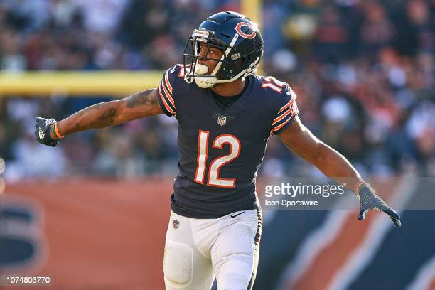 Chicago Bears wide receiver Allen Robinson looks on in action during an NFL game between the Green Bay Packers and the Chicago Bears on December 16,...