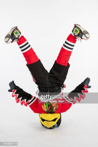 Chicago Blackhawks mascot Tommy Hawk poses for a portrait on August 13 2019 at the United Center in Chicago Illinois