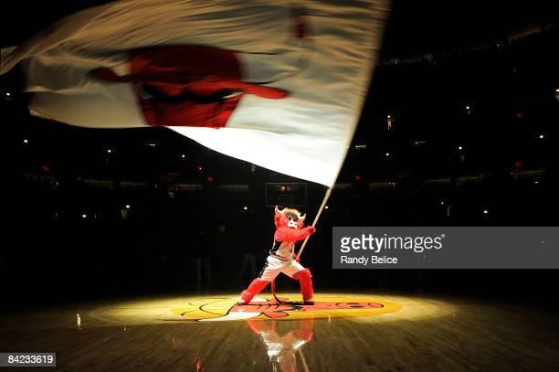 Chicago Bulls mascot Benny the Bull waves the team flag prior to player introductions for the NBA game against the Washington Wizards on January 9...