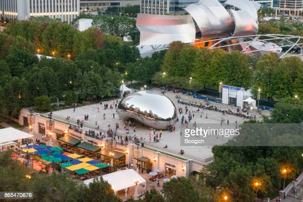 Chicago Cloudgate Millennial Park Illinois Cityscape View