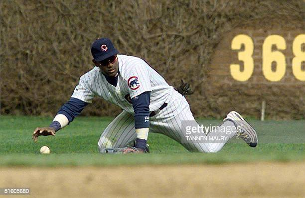 Chicago Cubs outfielder Sammy Sosa crawls on the ground after diving and missing a fly ball hit by Cincinnati Reds infielder Sean Casey in the top of...