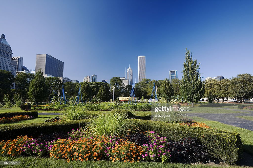 Chicago from Grant Park : Stock Photo