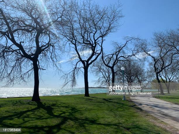 chicago - jcbonassin stock pictures, royalty-free photos & images