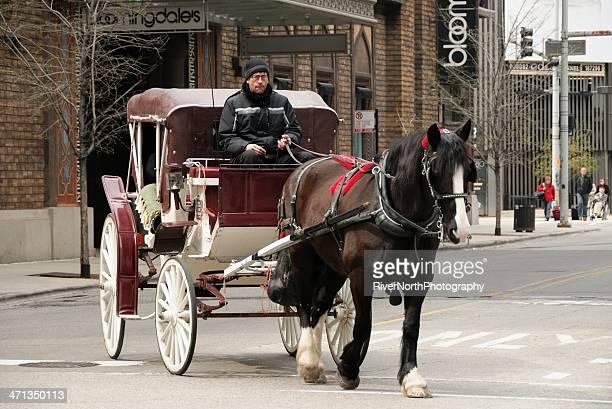 chicago. - pferdeantrieb stock-fotos und bilder