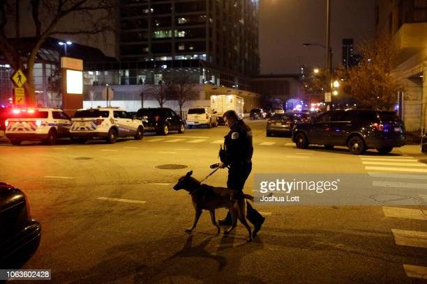 Chicago police officer walks with his police dog outside Mercy Hospital after a gunman shot multiple people on November 19 2018 in Chicago Illinois...