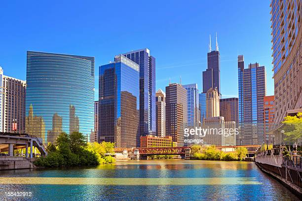 chicago river and cityscape - willis tower stock photos and pictures