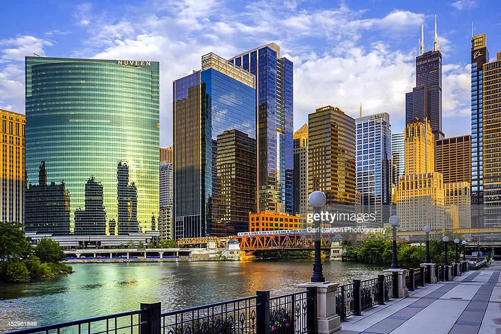 Chicago River & Willis Tower : Stock Photo