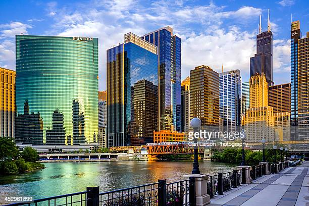 chicago river & willis tower - chicago river stock pictures, royalty-free photos & images