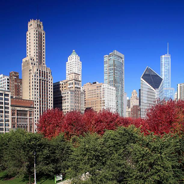 Chicago skyline and Millennium Park