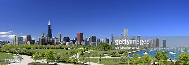 Chicago Skyline Park Panorama