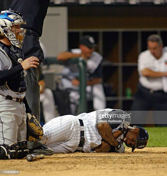 Chicago White Sox Right Fielder, Jermaine Dye, writhes in pain after being hit by a pitch during the game against the Toronto Blue Jays August 2,...