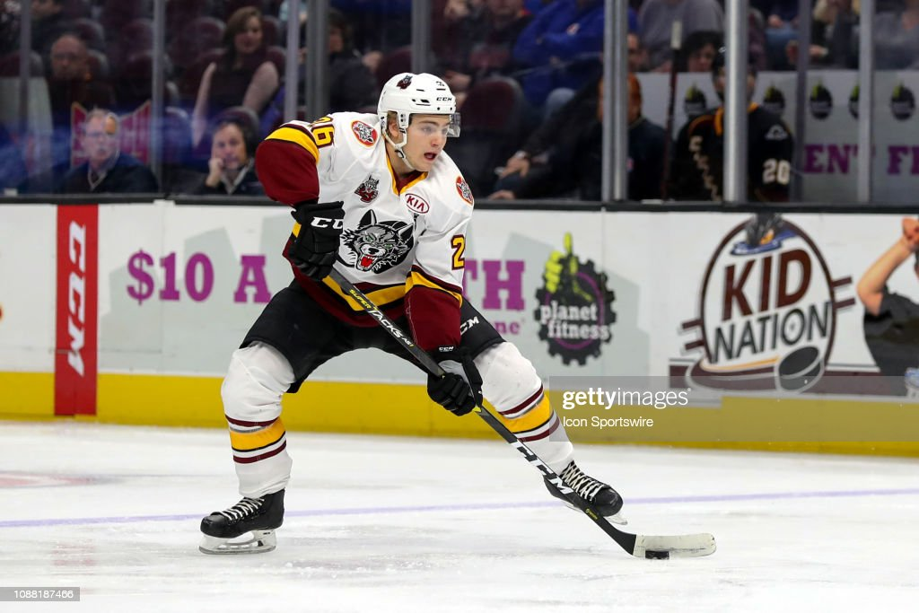 AHL: JAN 24 Chicago Wolves at Cleveland Monsters : News Photo