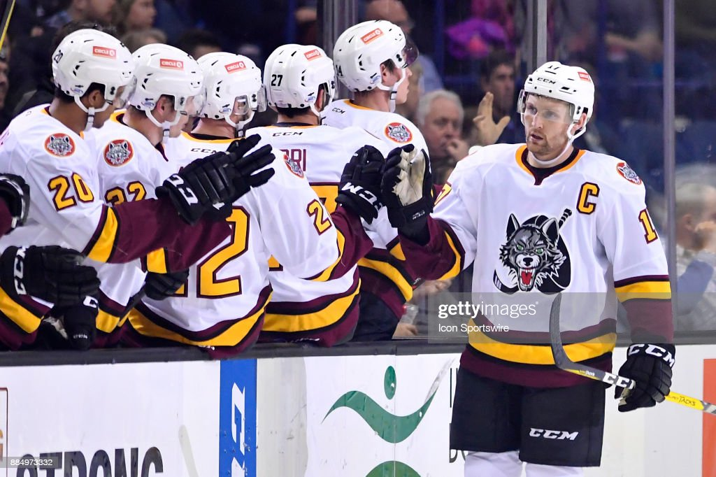 AHL: DEC 02 Grand Rapids Griffins at Chicago Wolves : Nachrichtenfoto