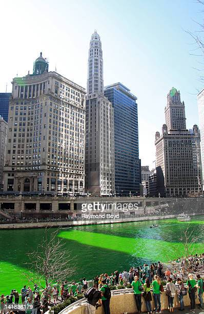 Chicagoans line along the Riverwalk after members of the Plumber's Union poured environmentally safe orange powder along the Chicago River turning it...
