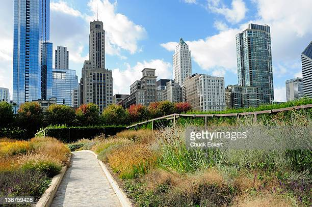 chicago's lurie garden and skyline. - millenium park stock photos and pictures