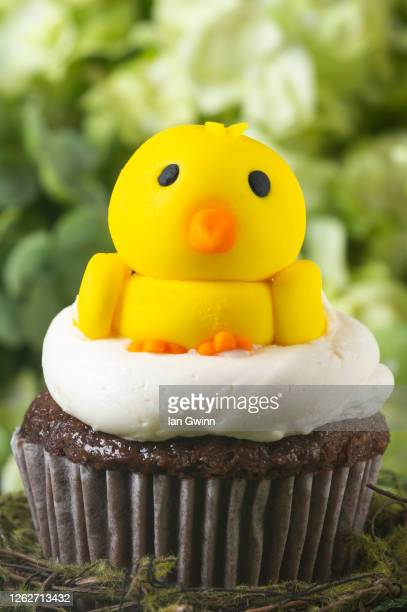 chick cupcake - ian gwinn stock pictures, royalty-free photos & images