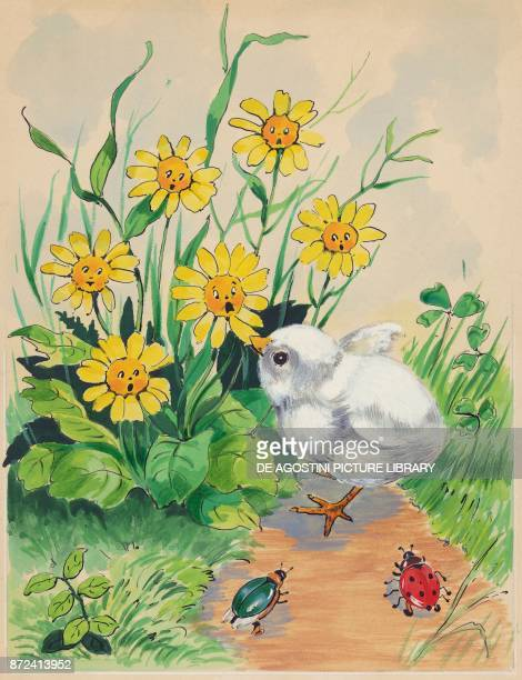 A chick pecking at the petals of a yellow flower children's illustration drawing