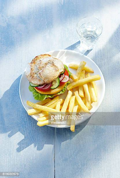 Chicken burger and french fries on plate