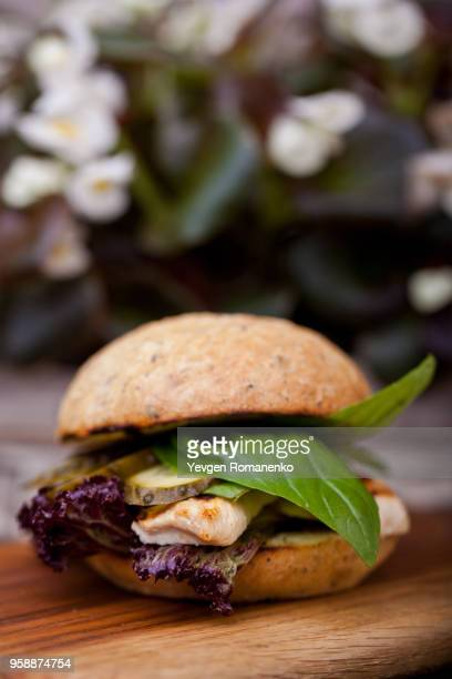 chicken burger with lettuce and pickles - juicy stock photos and pictures