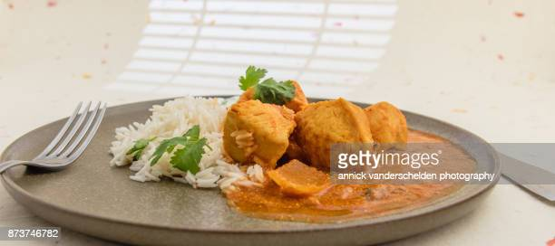 chicken curry, rice and yoghurt-cilantro mixture. - curry soup stock photos and pictures