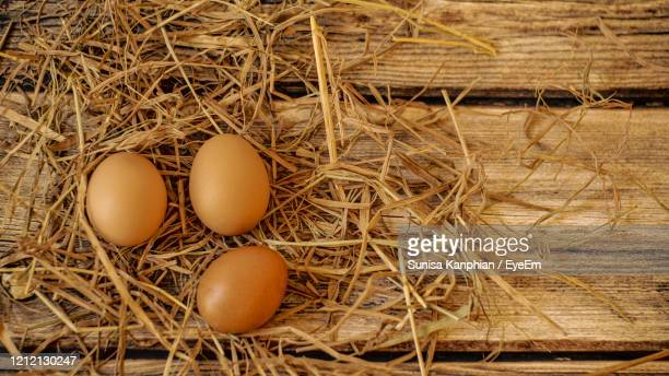 chicken eggs with straw on wooden table - vorbeigehen stock pictures, royalty-free photos & images