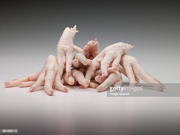 chicken feet - images of ugly feet stock photos and pictures