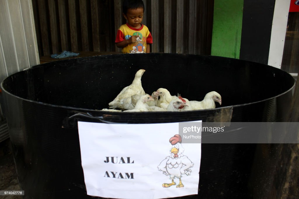 Chicken for sale in the last day of Ramadhan at Pamor traditional market, Cibitung, Bekasi regency, West Java, on Thursday, June 14, 2018. Muslims peoples will celebrate Eid al Fitr day on Friday, June 15, after they finished a month of fasting in holy Ramadhan.