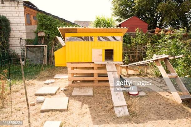 chicken house in garden - chicken coop stock pictures, royalty-free photos & images