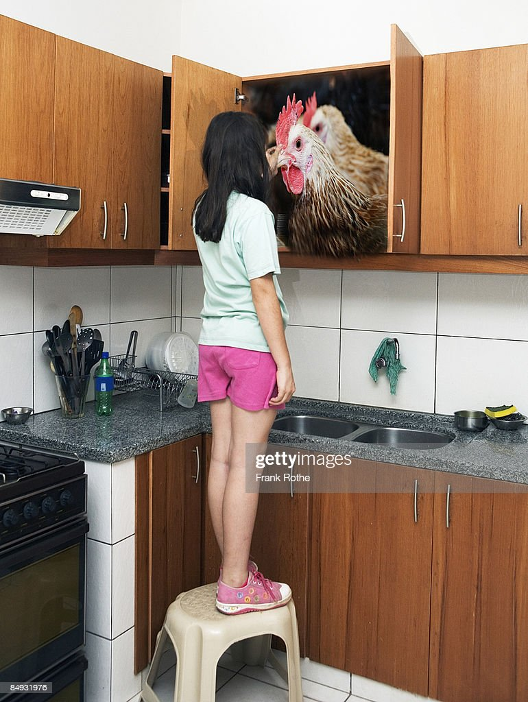 chicken in a kitchen cupboard with girl touching : Stock Photo