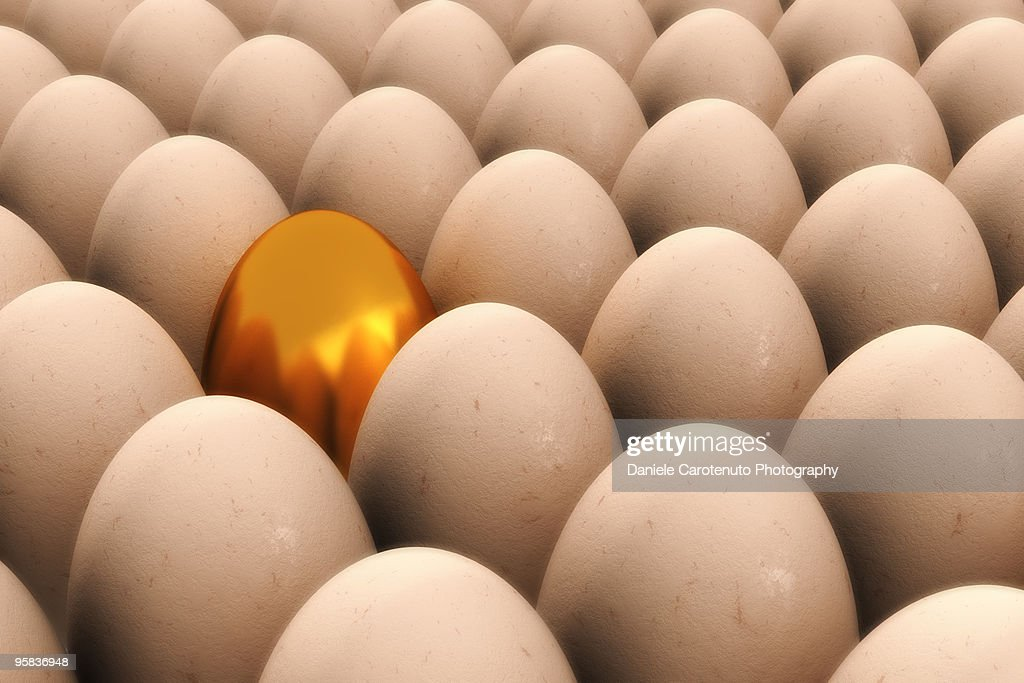Chicken of the golden eggs : Stock Photo