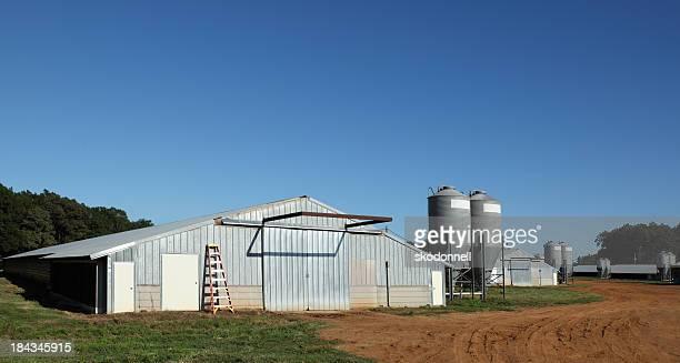 Poulet Ranch