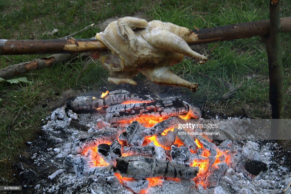 chicken roasting over campfire ushnya ukraine stock photo getty images